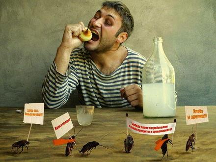 Обои Тараканы устроили демонстрацию с плакатами 'Хлеба и зрелищ' на столе, где кроме самогона и лука ничего нет (Здесь есть больше нечего, Идем к соседям, Свободу слова потребителям и свежие продукты в супермаркете, хлеба и зрелищ!!!)