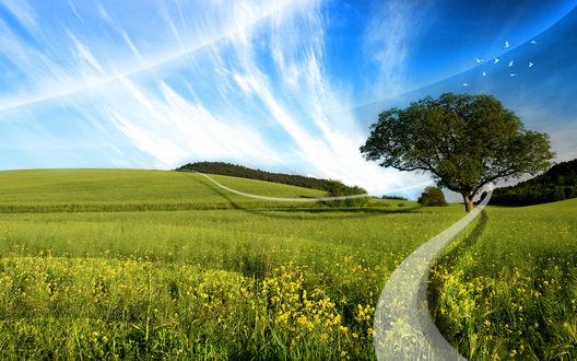 Обои Сельский пейзаж и немного ретуши