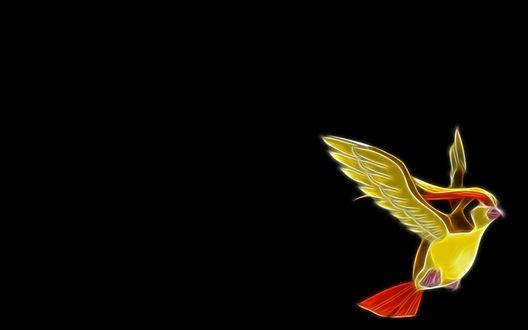 Обои Неоновая птица - покемон