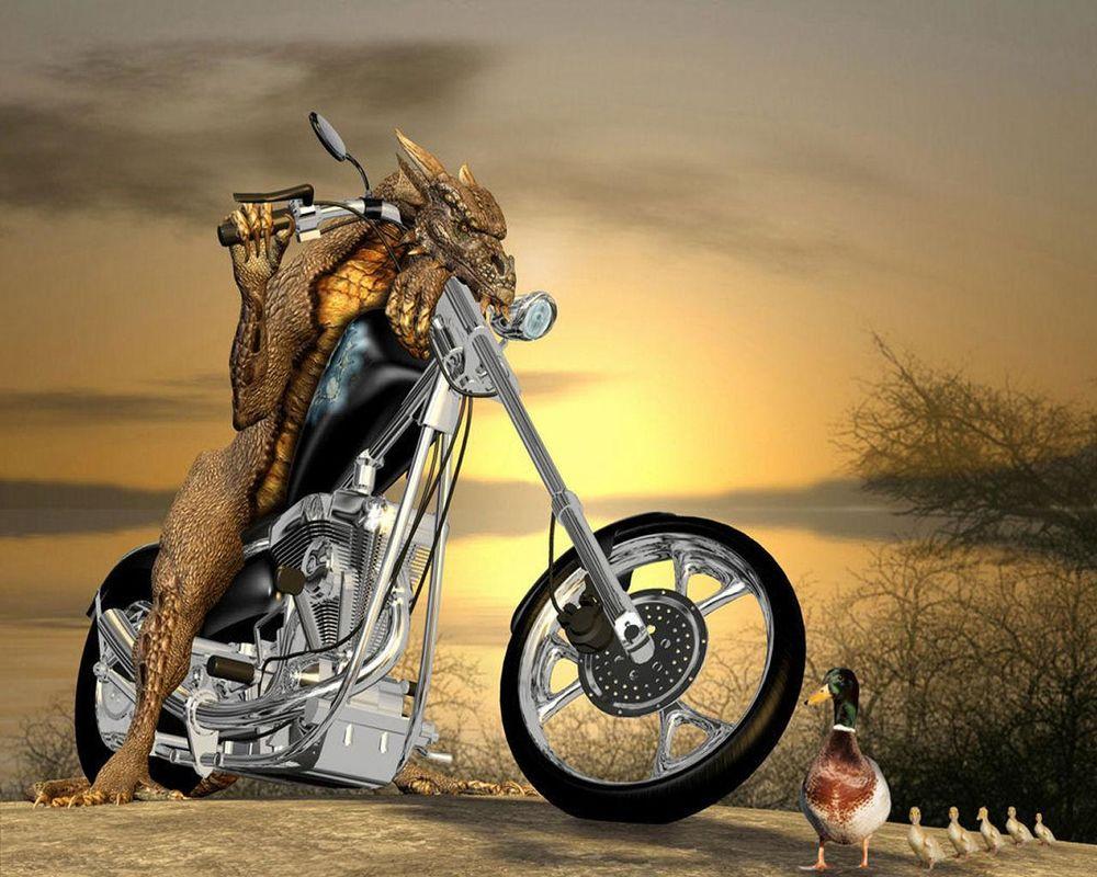 Картинки прикольные на мотоцикле