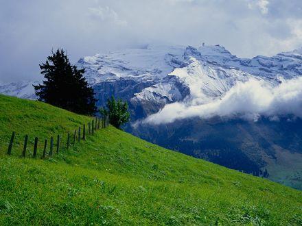Обои Красивый вид на заснеженные горы