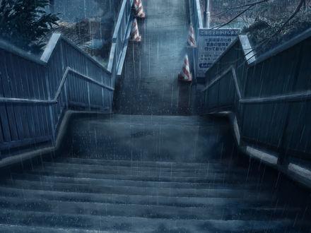 Обои Ступеньки в дождливую погоду