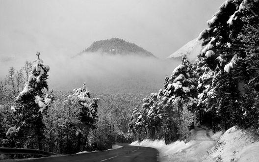 Обои Зимняя горная дорога