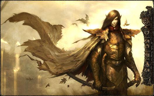 Обои Жестокий эльф в доспехах и с мечом (Disciples)