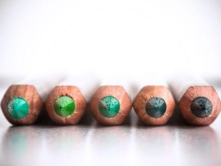 Обои Пять цветных карандашей в зеленых тонах