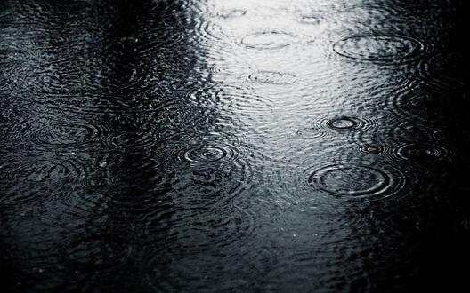 Обои Капли дождя стучат по луже