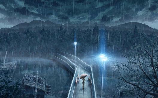Обои Девушка под зонтом на мосту смотрит в даль