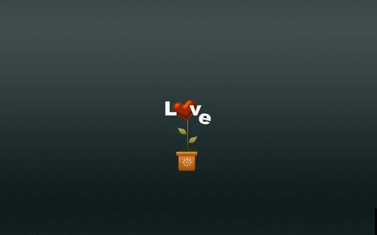 Обои В горшке растет сердечко (LOVE)