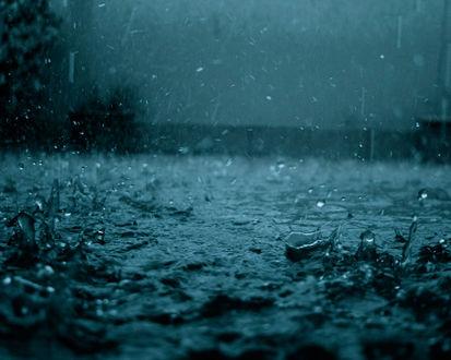 Обои Тёмные, спокойные по тону обои с падающими и отскакивающими от асфальта каплями дождя.