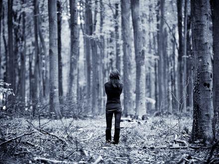 Обои Девушка гуляет одна по лесу