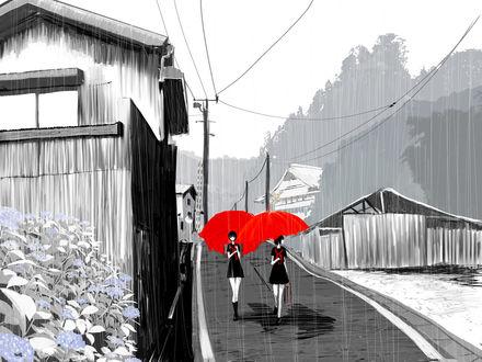 Обои Девушки с зонтами идут по просёлочной дороге