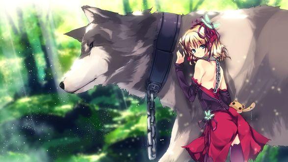 Обои Девушка с большим волком на цепи
