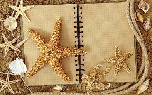 Обои На тетрадке лежат морские звезды