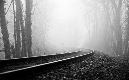 Обои Железная дорога в туманном лесу