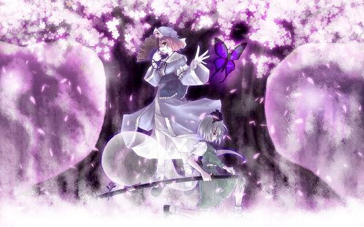 Обои Ююко Сайгедзи / Yuyuko Saigyouji и Йому Компаку / Youmu Konpaku из Тохо / Touhou Project на фоне цветущей сакуры