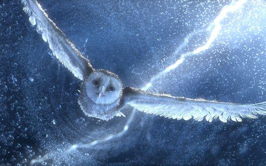 Обои Ночной страж — сова, наперекор буре с дождём и молниями облетает свои владения из мультфильма «Легенды ночных стражей» / «Legend of the Guardians: The Owls of Ga'Hoole»