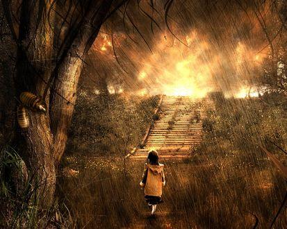 Обои Девочка под неистовым дождём идёт через лес к лестнице, за которой садится солнце
