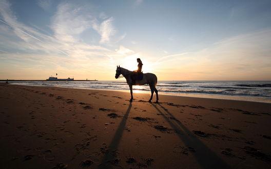 Обои Девушка на лошади на пляже на закате
