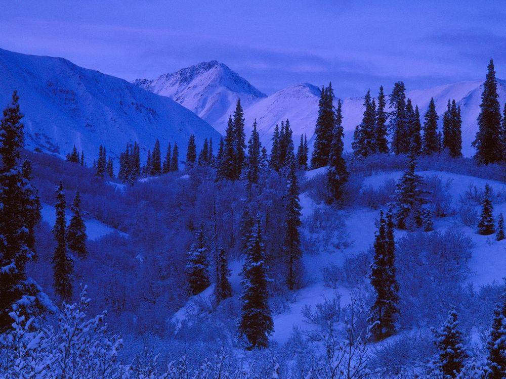 Обои для рабочего стола Ночь на Аляске