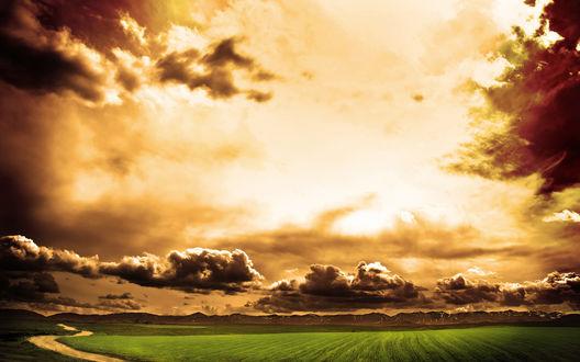 Обои Красивый закат над полем