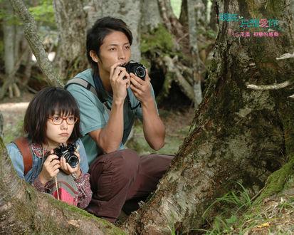 Обои Макото и Сизуру в лесу, фильм 'Я просто люблю тебя' / 'Tada, kimi wo aishiteru' (Heavenly forest)