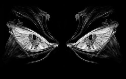 Обои Злые глаза