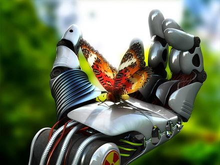 Обои Бабочка сидит у робота на руке