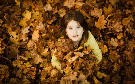 Обои Девочка в опавших осенних листьях