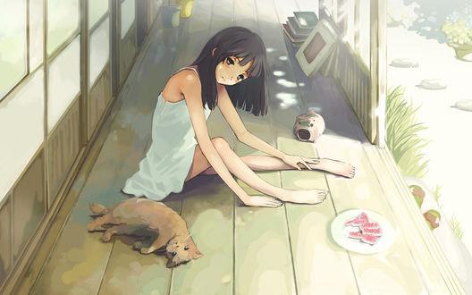 Обои Девушка рядом с кошкой и тарелкой обглоданных арбузных корок сидит на веранде