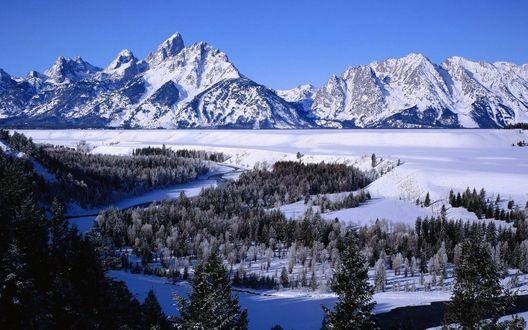 Обои Вид на заснеженный лес и горы
