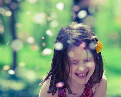 Обои Девочка с одуванчиком в волосах смеется в парке