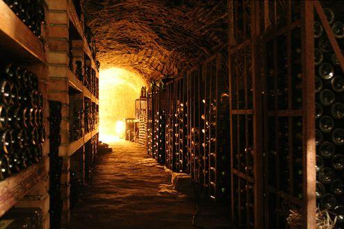 Обои Уютный винный погреб с длинными рядами полок