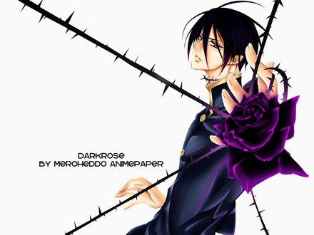 Обои Парень из манги 'Поцелуй Принцессы Роз / Barajou no Kiss' с розой (DARKROSE BY MEROHEDDO ANIMEPAPER)