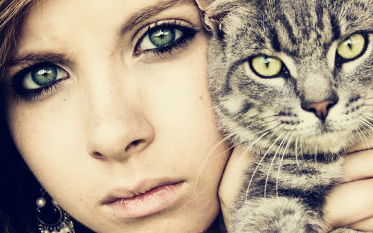 Обои Девушка со своим полосатым котом