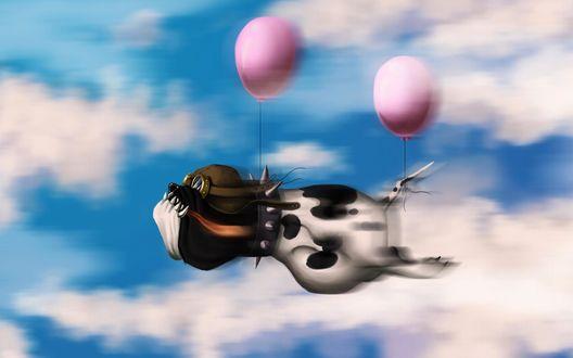 Обои Пес-летчик на двух воздушных шарах