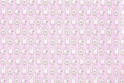 Обои Маленькие белые кролики