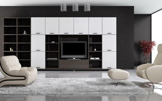 Обои Гостиная, оформленная в чёрных и белых цветах