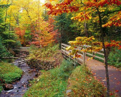 Обои Красивый пейзаж осеннего парка с маленькой речушкой