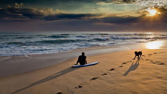 Обои Серфер сидит и  смотрит на небо, пока его пес носится по пляжу