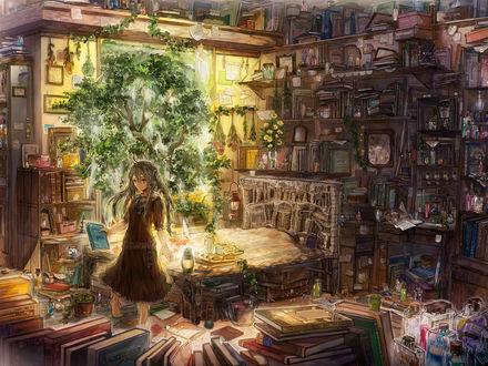 Обои Девушка в комнате, захламлённой множеством книг, коробочек и пузырьков, в которой произрастает дерево и цветы, с книгой в руке