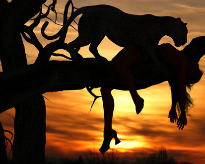 Обои Леопард поймал девушку и затащил ее на дерево