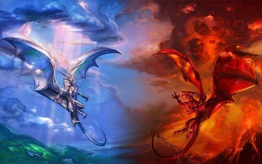 Обои Красный и голубой драконы