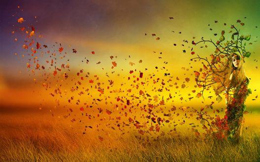 Обои Девушка-дерево теряет свои золотые листья
