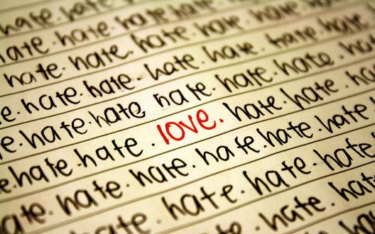 Обои Среди моря ненависти есть любовь (love hate)