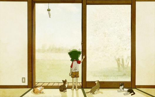 Обои Маленькая девчушка с котятами смотрит вдаль