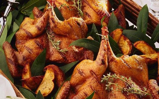 Обои Куриные ножки, запечённые с веточками тимьяна, листьями лавра и картошкой фри