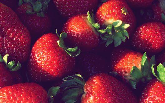 Обои Красивые ягоды клубники