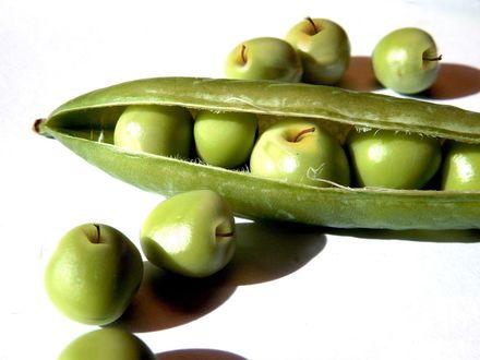 Обои Зеленые яблоки в стручке