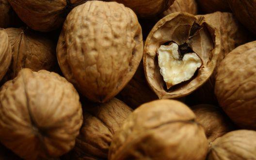 Обои Грецкие орехи
