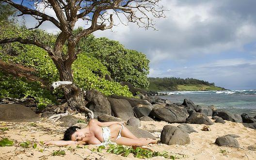 Обои Девушка нежится на песке под деревом